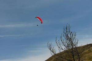5-秋空にパラグライダー