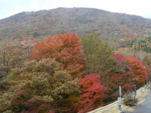 1-久住高原の紅葉