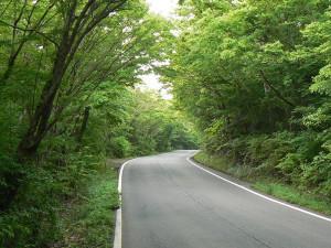 3-緑のトンネル