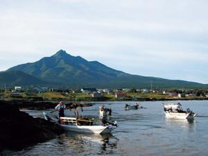44-05天然昆布漁