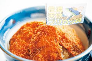 46-06ブリカツ丼-