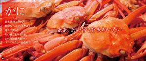 top_kani04